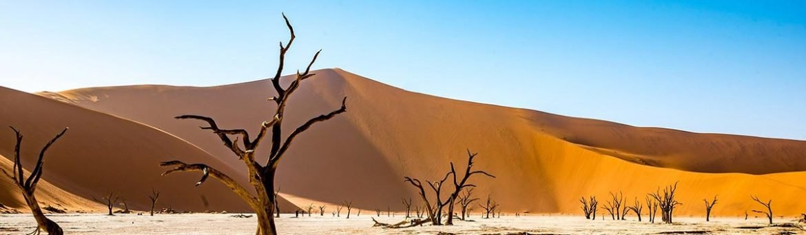 Book Namibia - Featured Image