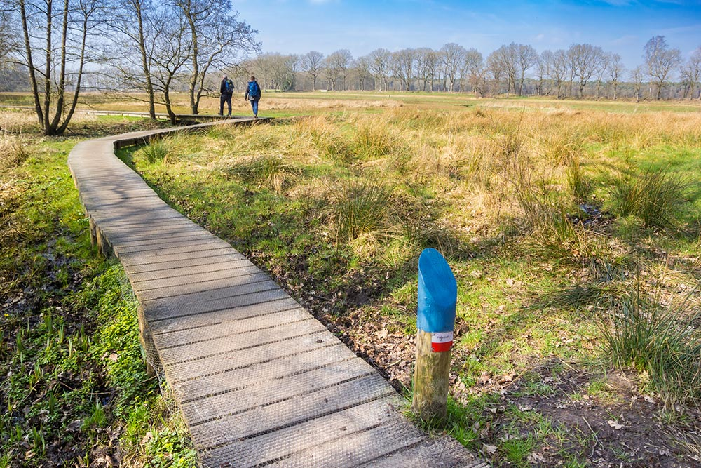 Pieterpad walking trail in the Netherlands