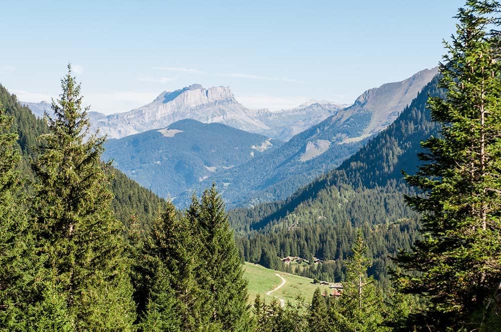 Landscape of the Tour du Mont Blanc
